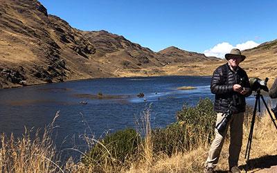 Birding Andes - Peru